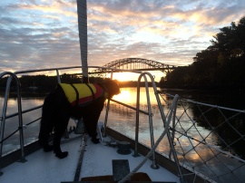 Piscataqua sailing sunrise