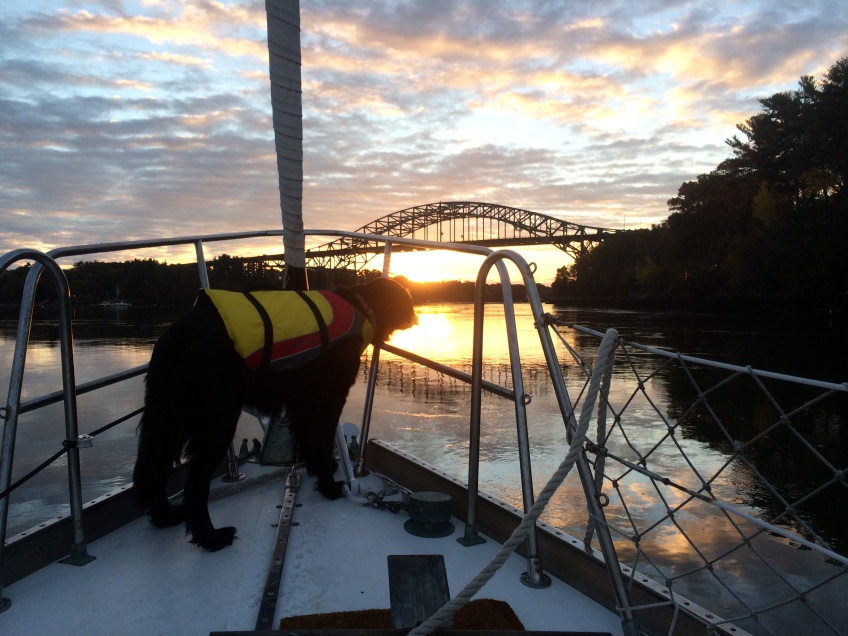 Piscataqua sailing sunrise