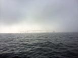 Annapolis sailing fog