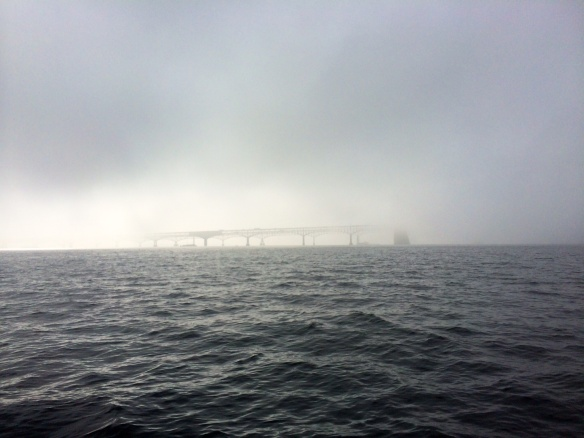 Annapolis fog
