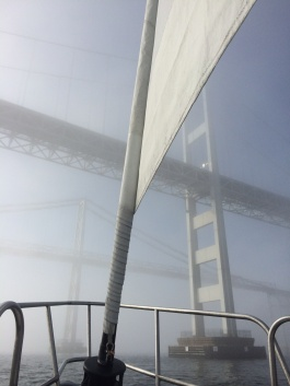 Annapolis sailing fog bridges