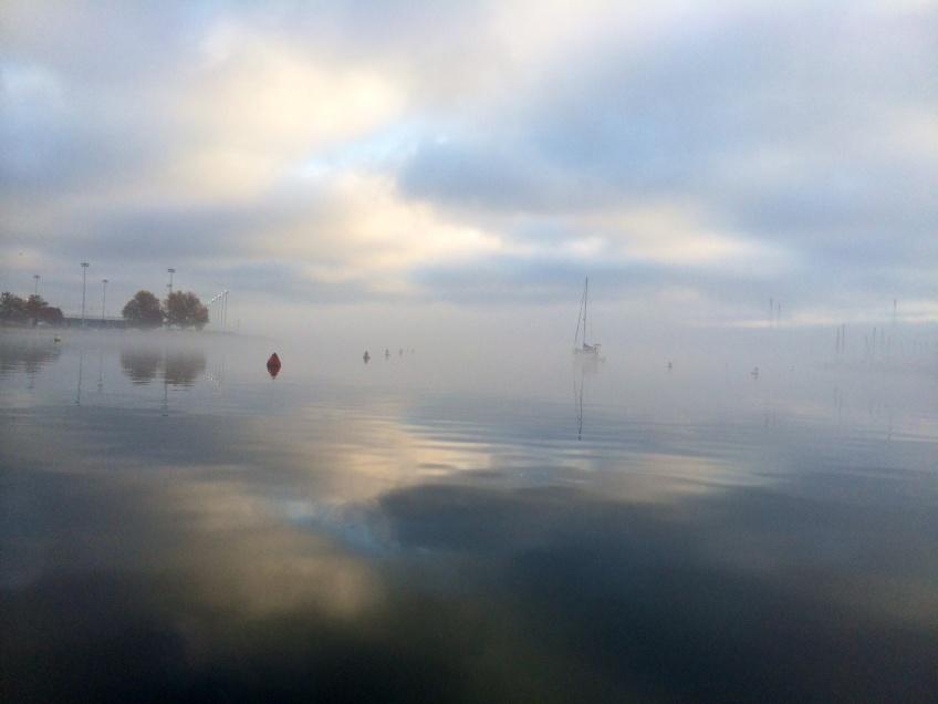 Annapolis harbor sailboat fog