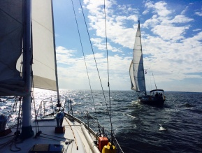 Chesapeake Bay sailing