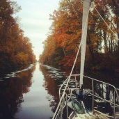 Dismal Swamp Canal foliage