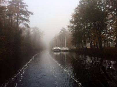 Dismal Swamp Canal fog